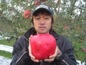 heaviest-apple