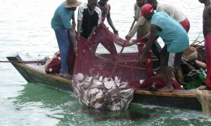 coastal-east-africa-threats-07302012hi_114886